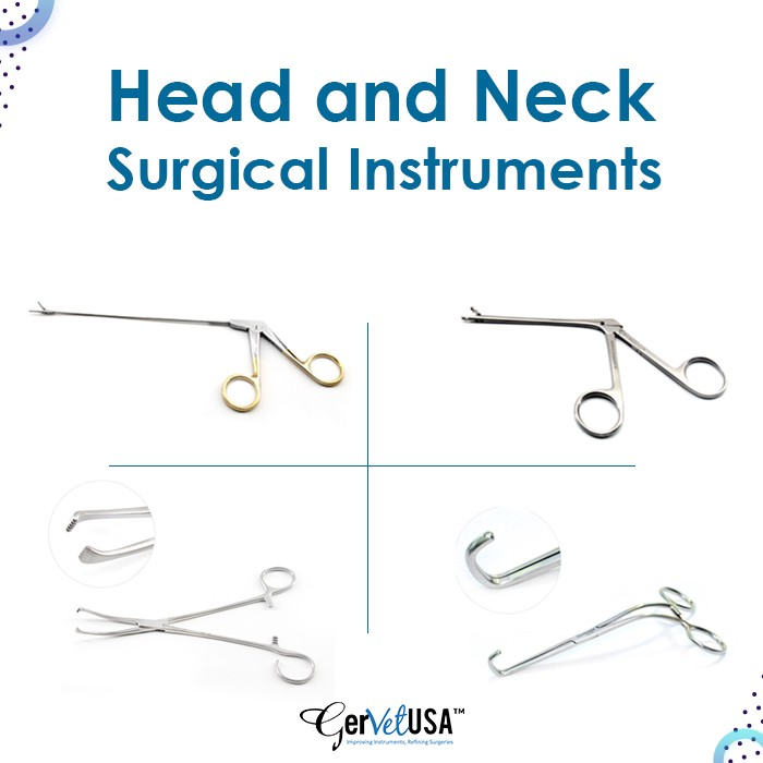 Why Do Veterinarians Need Head and Neck Surgical Instruments? | by George | Mar, 2021 | Medium