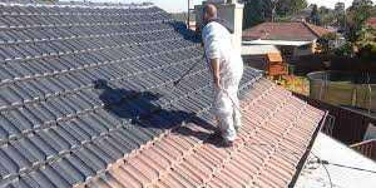 Things you need to know before painting your roof