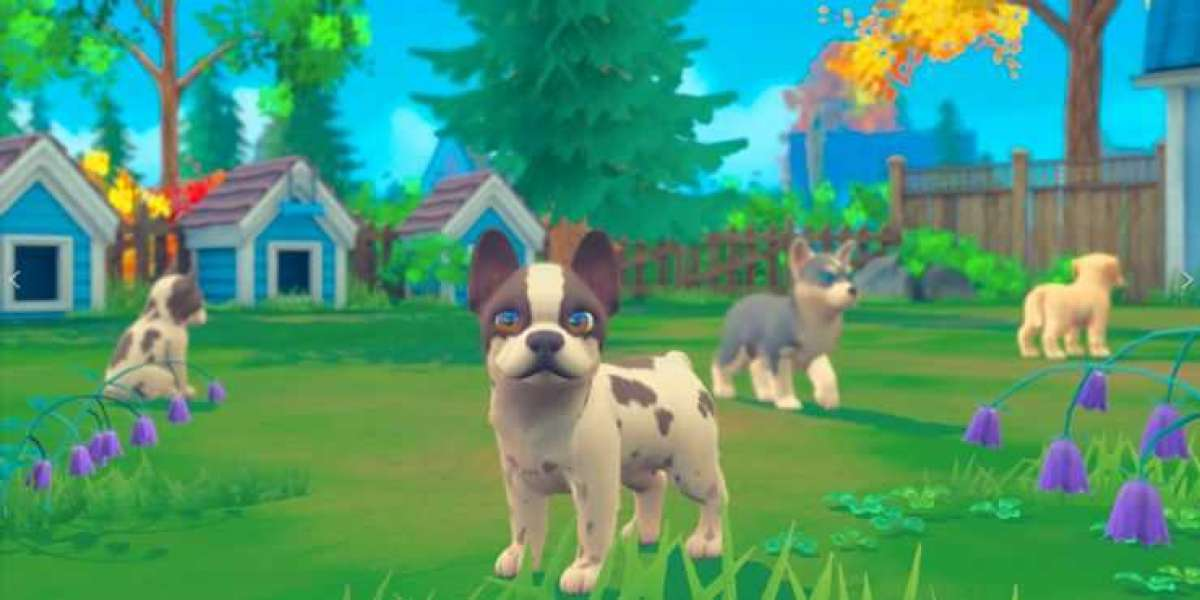 Puppies and Kittens on Switch Could Help Fill the Nintendogs Void on the Console