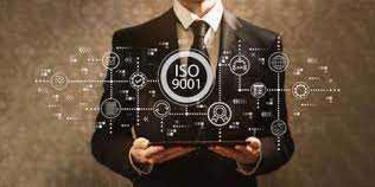 Are you confused about being organised about quality management according to ISO 9001?
